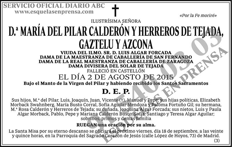 María del Pilar Calderón y Herreros de Tejada, Gaztelu y Azcona